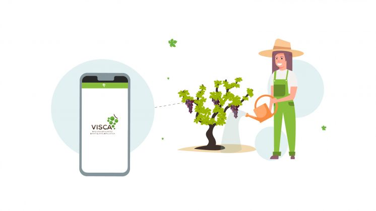 Explore the Preliminary Results of VISCA Project!
