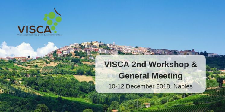 VISCA: 2nd Workshop and General Meeting