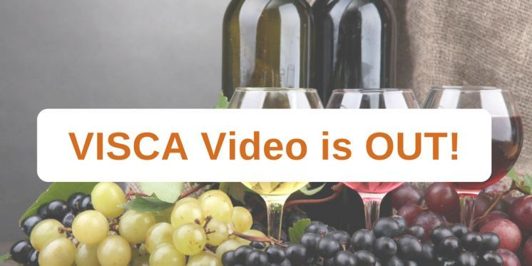 VISCA Video: A collaborative innovation for climate adaptations in wine industry