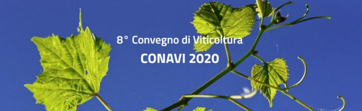 8th National Symposium on Viticulture (CONAVI2020) - POSTPONED