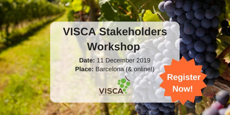 Join VISCA Stakeholders Workshop 2019 & Register now!