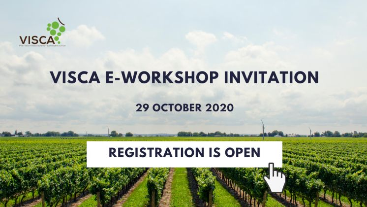 Join us at VISCA e-workshop, 29 October 2020