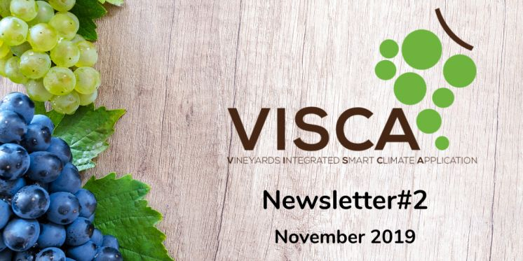 VISCA Newsletter #2: Discover our DSS & Join us at the Stakeholders Workshop in Barcelona!