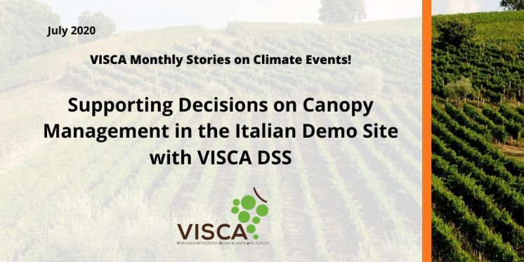 Supporting Decisions on Canopy Management in the Italian Demo Site with VISCA DSS