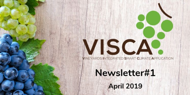 VISCA Newsletter #1 is OUT!