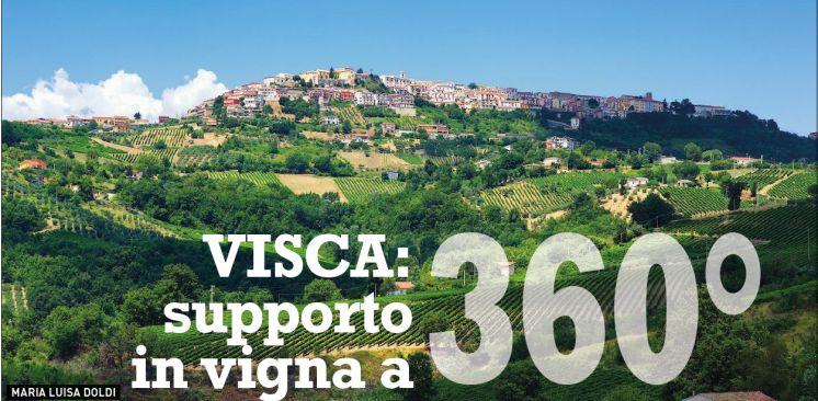 VISCA: 360 support in the vineyard by VVQ
