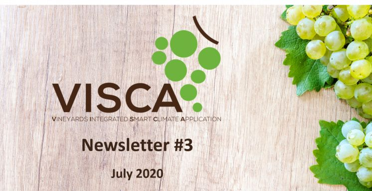 VISCA newsletter #3: Supporting viticulturists in climate change adaptation with VISCA DSS!